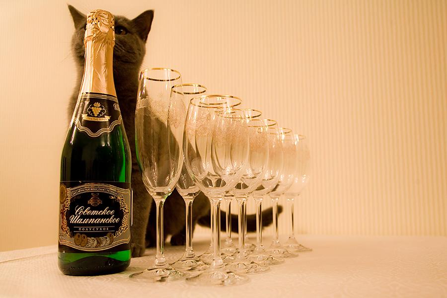 прикольные картинки шампанского отсрочка платежа это