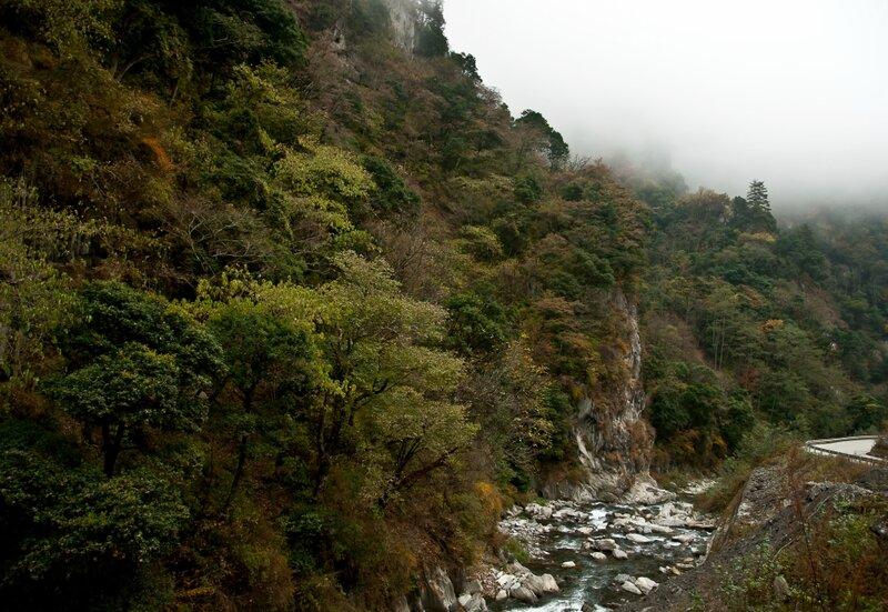Осений лес на склоне горы