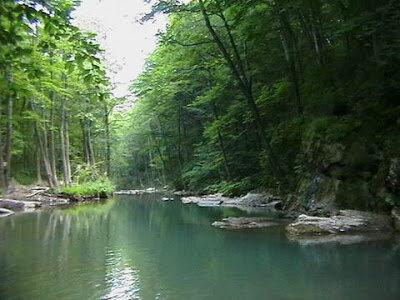 Горная река Адегой вдоль дороги на Кабардинку