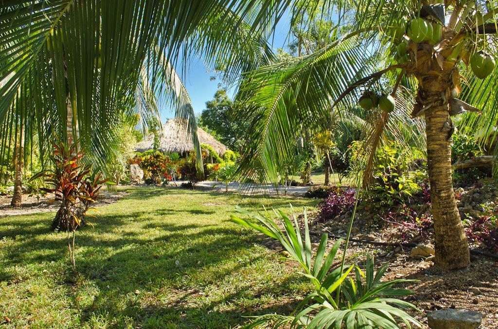"""Фотография 4. Эко-отель """"Active Nature"""" у лагуны Bacalar. Отзывы туристов об отдыхе в Мексике самостоятельно. 1/100, 11.0, 200, 18."""