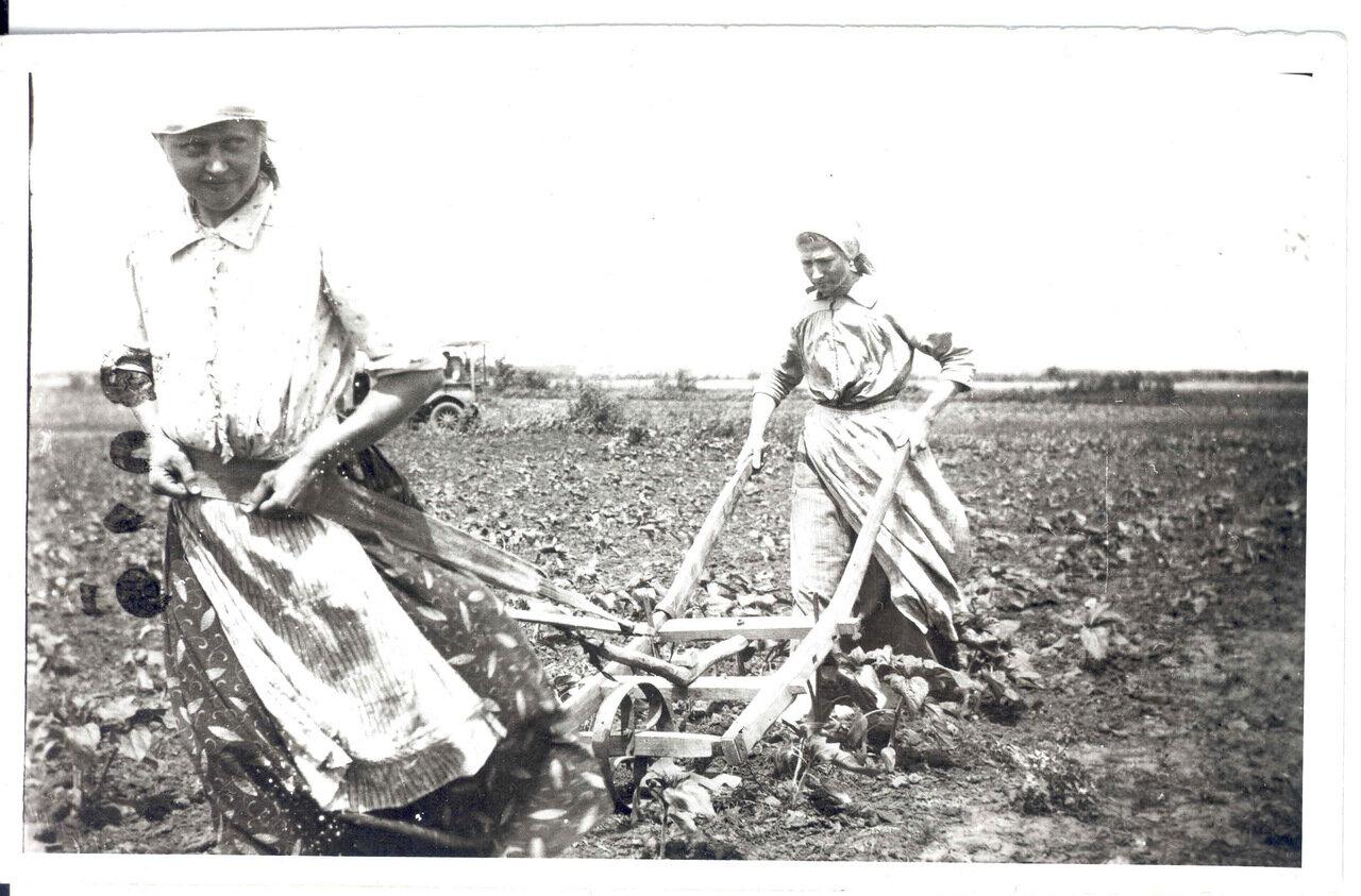 Девушки меннонитки пашут землю