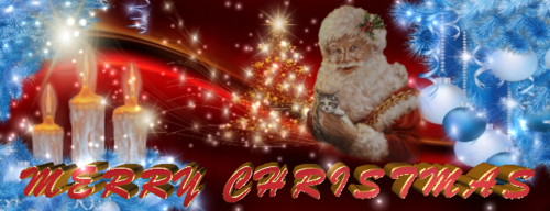 Merry_Christmas_650x250_8.png