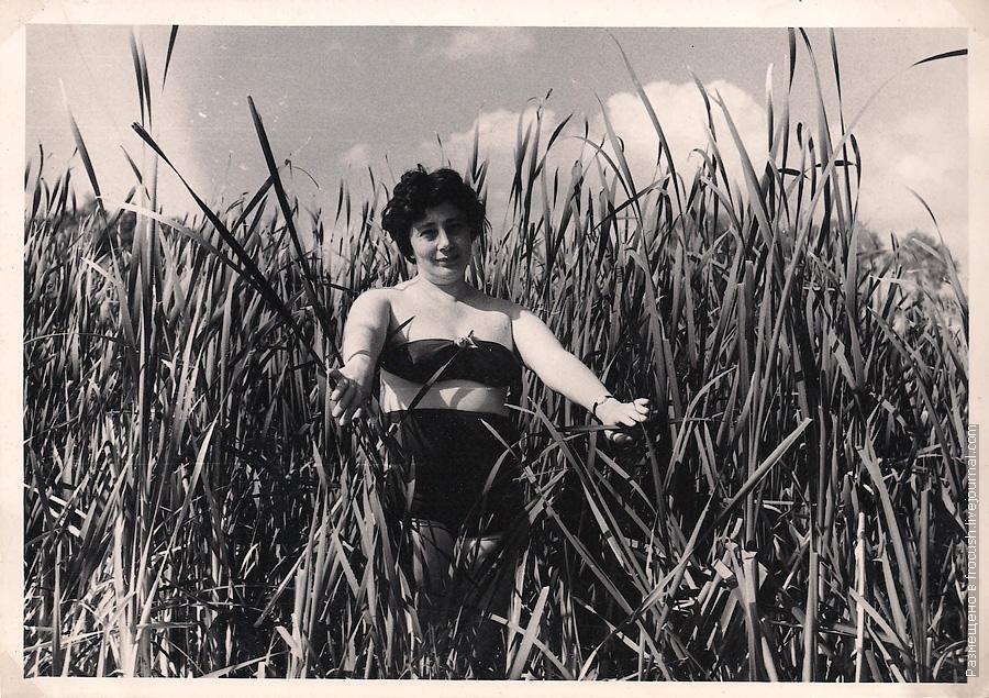 женщина в камыше 1965 год