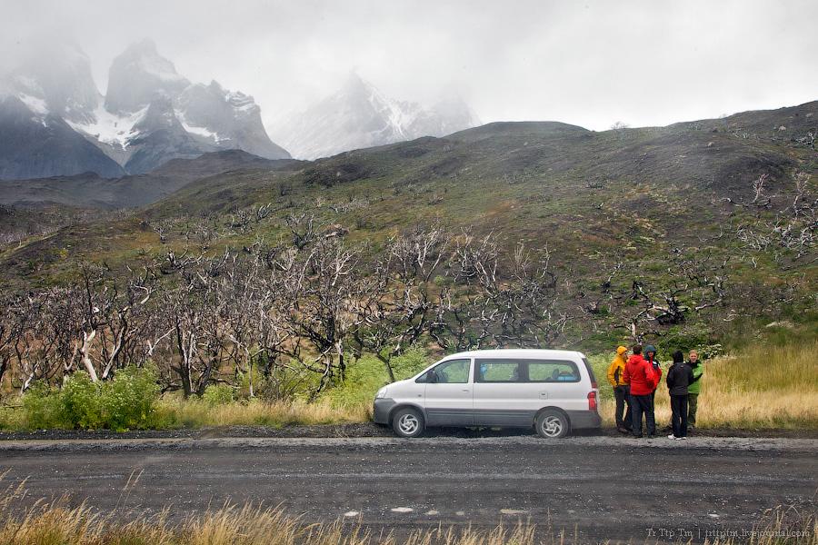 26. Восхождение к Голубым Башням и животный мир Южной Патагонии