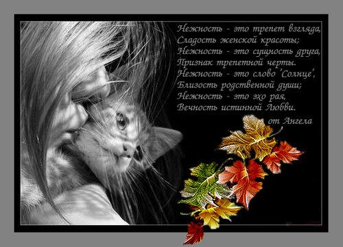 http://img-fotki.yandex.ru/get/4129/193359099.0/0_a12c1_25fe9697_L.jpg