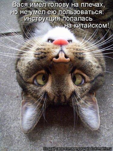http://img-fotki.yandex.ru/get/4129/194408087.0/0_8d96c_c68f7256_L.jpg