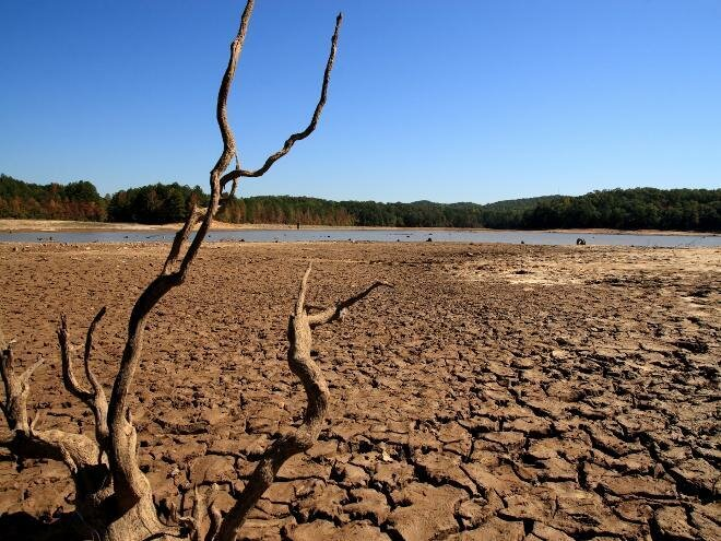 Засуха вспахала.