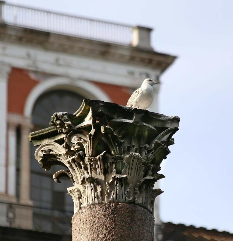 Naples. Park Molodilo (Giardini del Molosiglio)