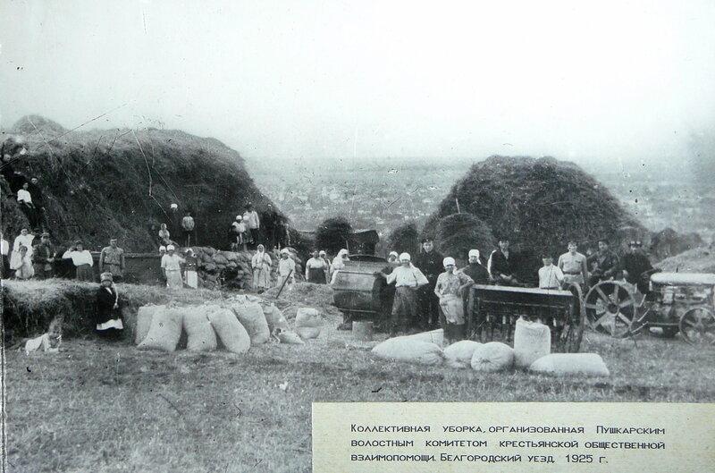 Уборка и заготовка сена на Харьковской горе, фото БГИКМ.