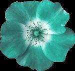 Sky_BK_Flower3.png