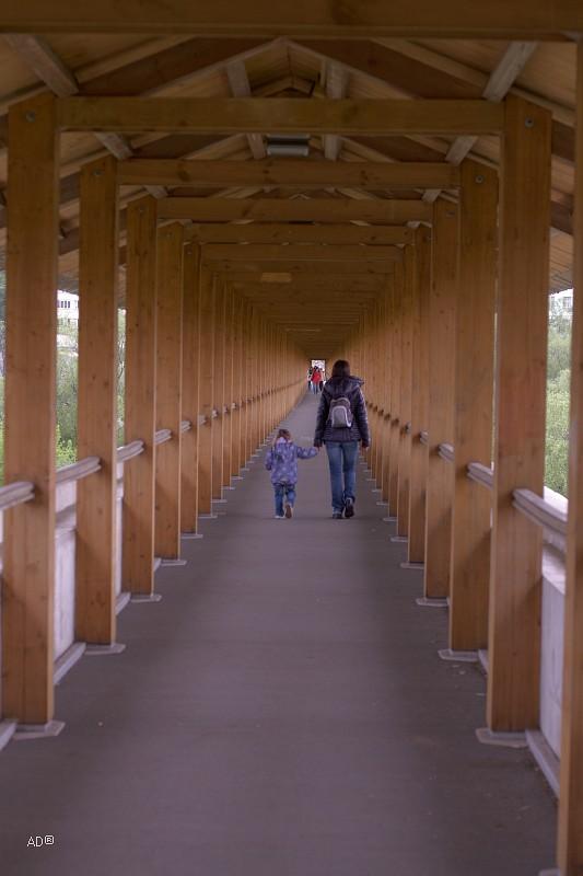 Ростокинский акведук («Миллионный мост»)