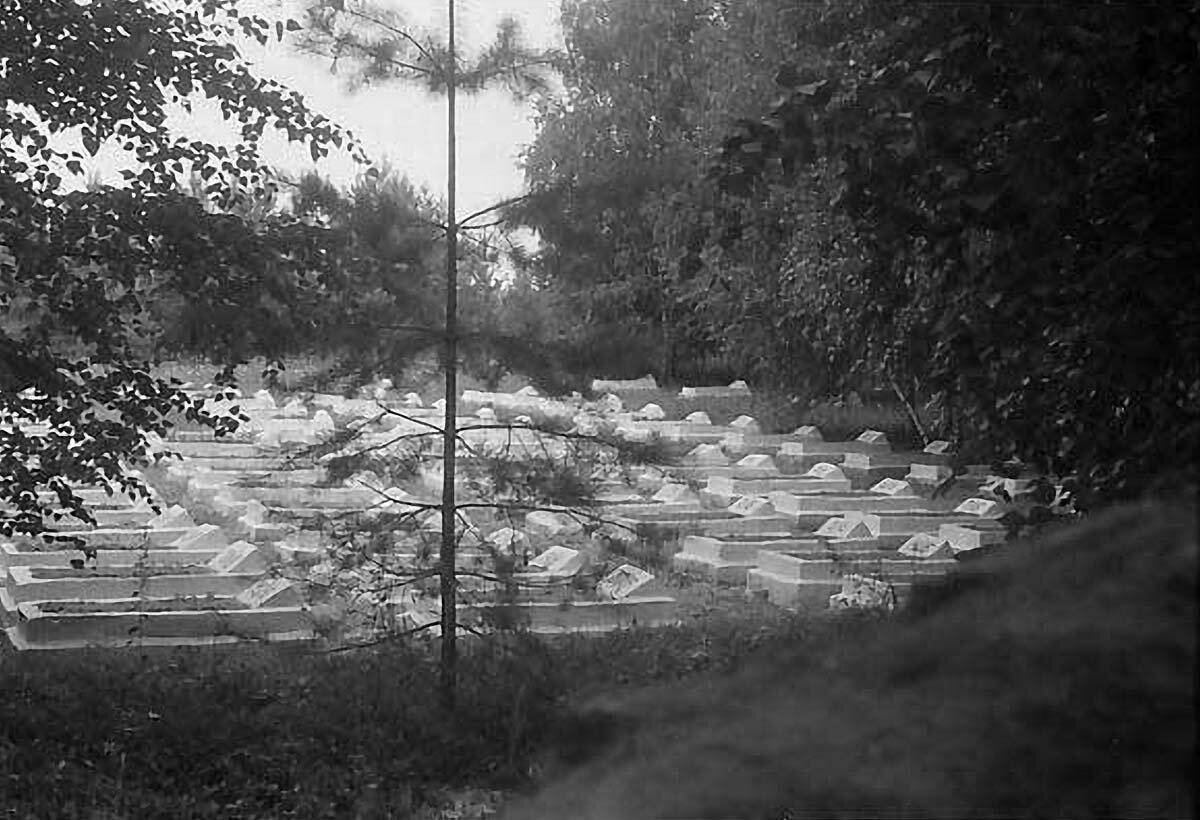 Кладбище японских военнопленных в Елабуге.
