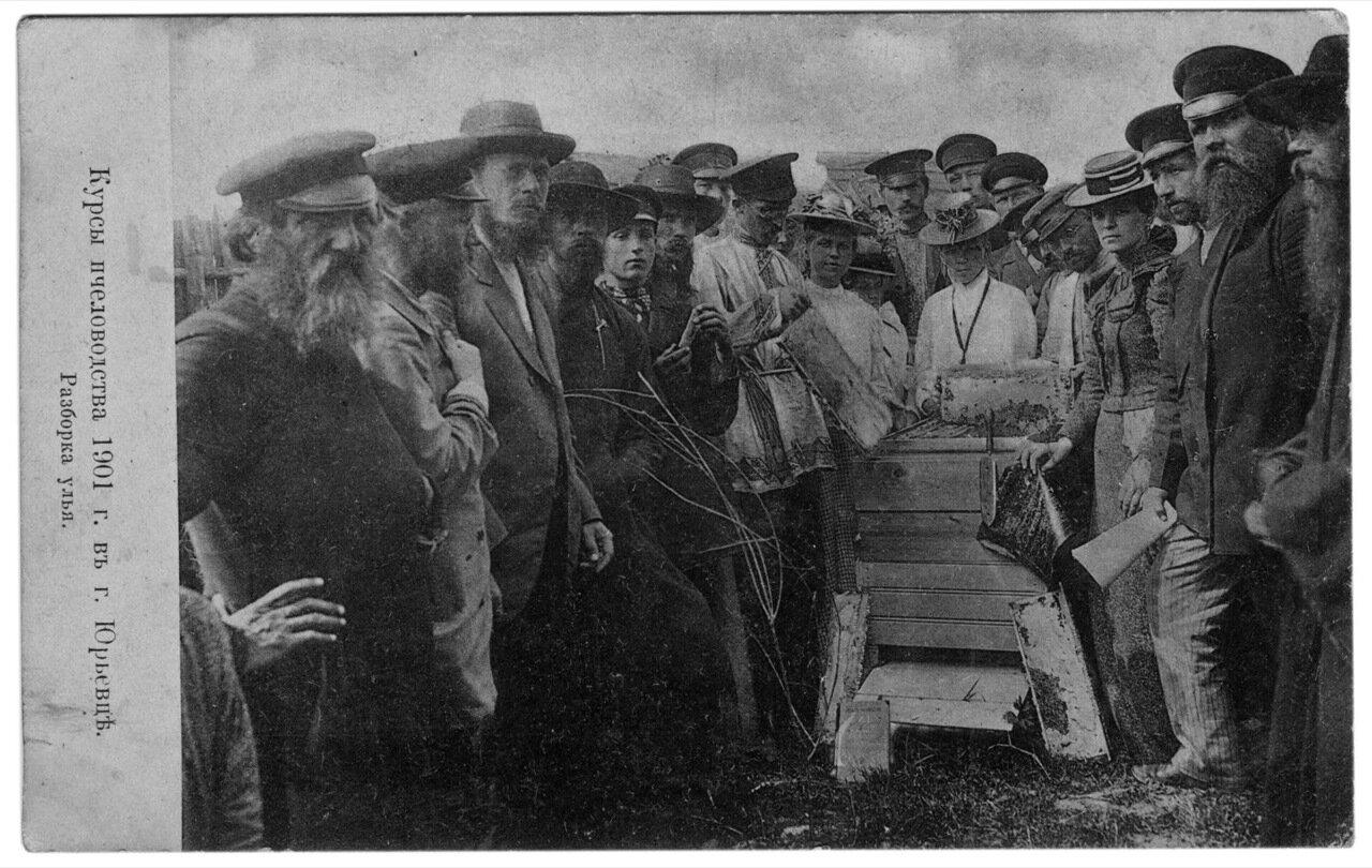 Курсы пчеловодства 1901 г. в г. Юрьевце. Разборка улья