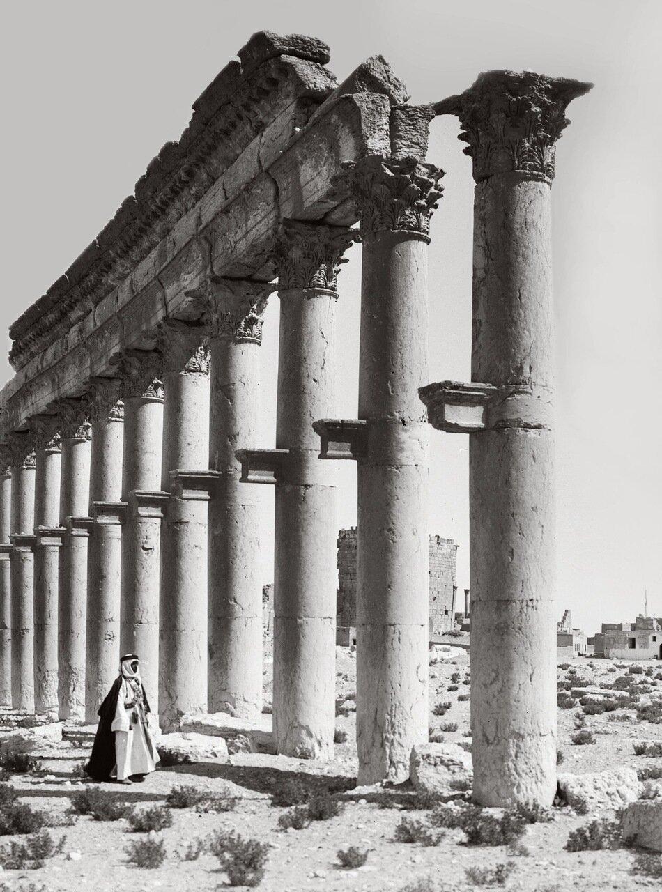 Коллонада Пальмиры. Тадмор, Сирия. 1900-1920 гг.