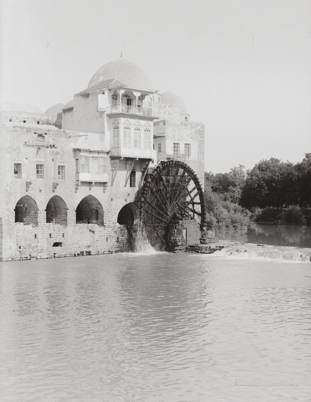 Водяное колесо. Хама, Сирия. 1900-1920 гг.