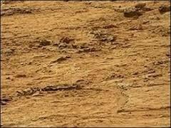 Curiosity нашёл на Марсе доказательства жизни
