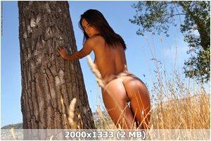 http://img-fotki.yandex.ru/get/4130/169790680.2/0_9d3a9_6de07126_orig.jpg
