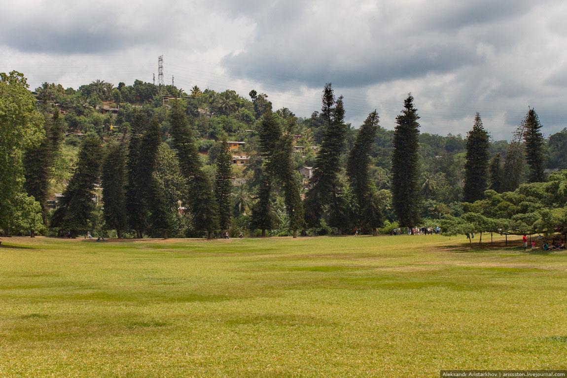 Шри-Ланка_Священный Канди_07