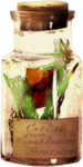 TurningLeafApothecary_LorieD_el (133).png