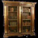 bookshelves15.png