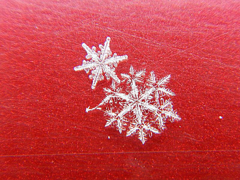 снежинка DSCN1256.jpg