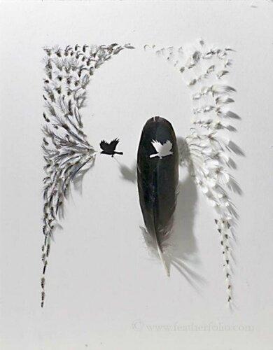 Арт перья