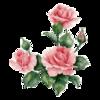 цветы для оформления