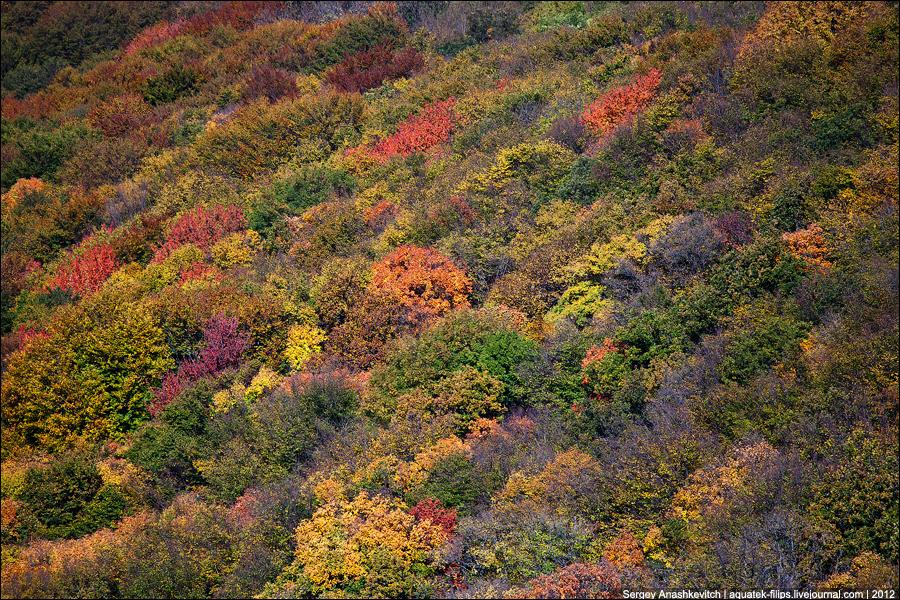 Осень на Чатыр-Даге