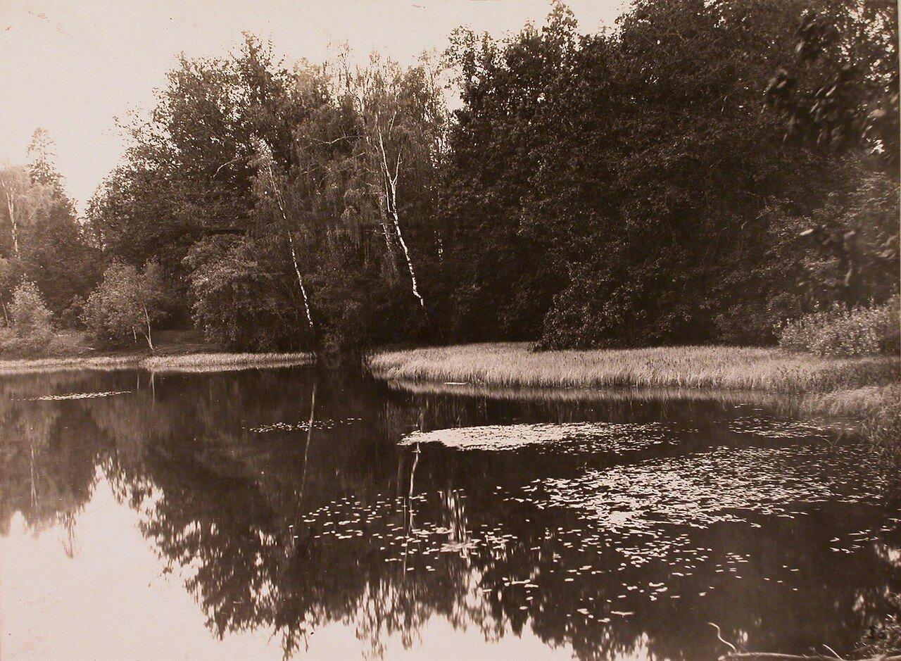 Вид части пруда в усадьбе Шереметевых. 1913
