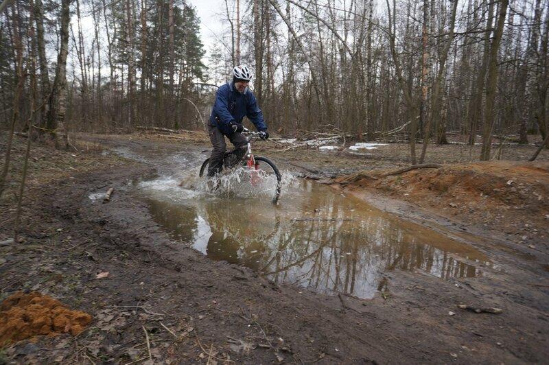Лес, апрель, велосипед, весна