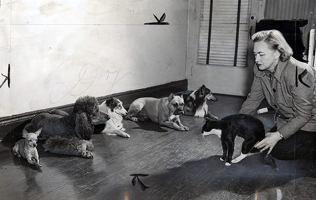 Trainer Frances Hartsook introduces a dubious cat before her class of dogs that have been trained not to attack