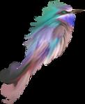butterflyDsign_elmnt22.png