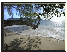 Сейшелы. О.Праслин. Raffles Praslin Seychelles