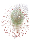 mds7726 Firework.png