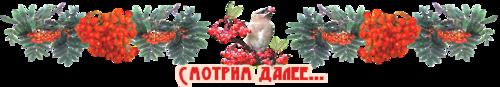 далее-птицы.png