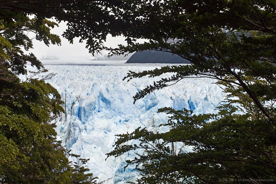 15. Устоявший перед потеплением. Ледник Перито Морено.