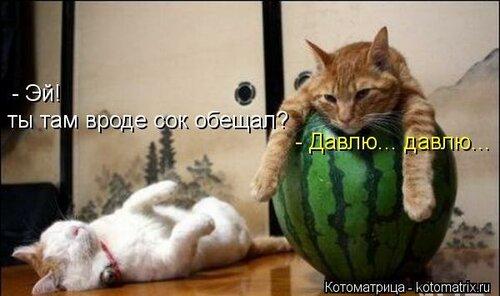 http://img-fotki.yandex.ru/get/4131/194408087.1/0_8e41d_472938ec_L.jpg