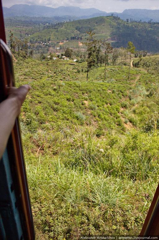 Шри-Ланка_Как угнать поезд_04