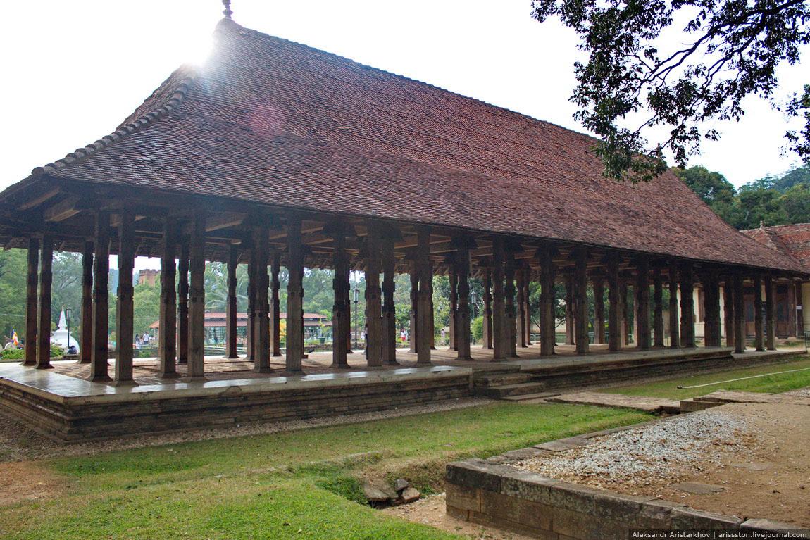 Шри-Ланка_Священный Канди_28