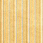 bg_yellowstripe_maryfran.jpg