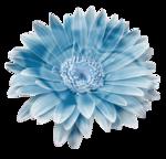 S.Designs_ColdWinter_el   (49).png