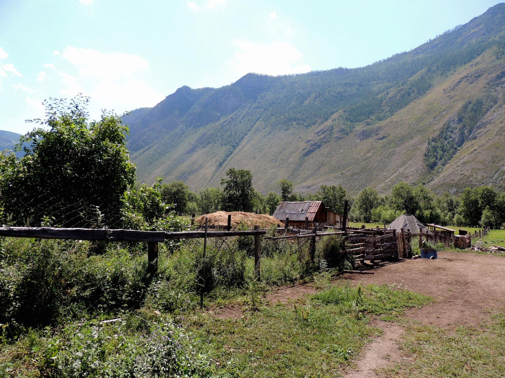 Чулышманская долина Двор алтайских фермеров 05 авг. 2015 г., 12-47.JPG