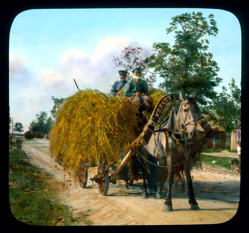 Крестьяне перевозят сено