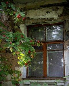 Осень стучится в окно.