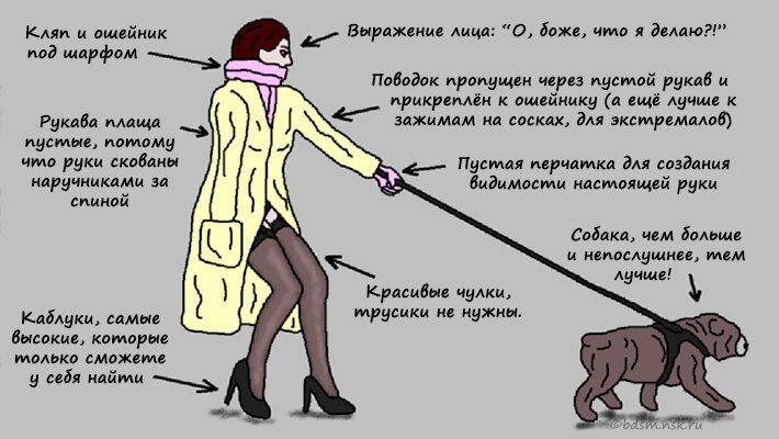 знакомства для прогулок с собаками