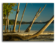 Beautiful beach Anse Lazio. Фото Christina Henningstad - Depositphotos
