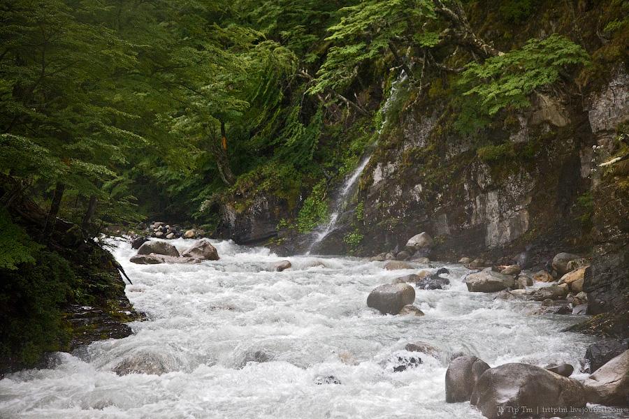 12. Восхождение к Голубым Башням и животный мир Южной Патагонии