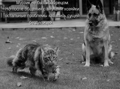 http://img-fotki.yandex.ru/get/4132/194408087.1/0_9085c_659642d_L.jpg