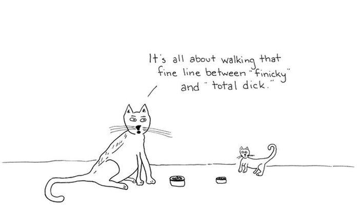 Смешные комиксы про котов на английском языке 0 c6d84 9ec1cb2e orig