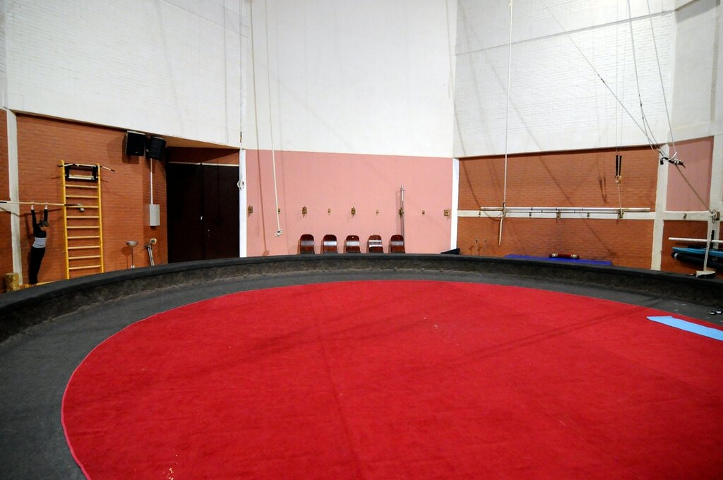 Экскурсия за кулисы цирка на Цветном бульваре